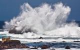Ocean spray  _MG_6430.jpg