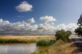 Marsh clouds  _MG_9202.jpg