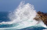 Breaking wave _MG_3016.jpg