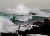 Where the ocean meets the land_MG_4494.jpg