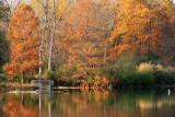 Autumn In Illinois