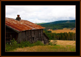 196-Old-farm-P13.jpg