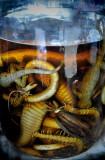 Whiskey ...Laos Style