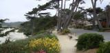 Carmel's scenic road