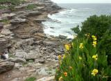 McKenzies Bay, with cannas