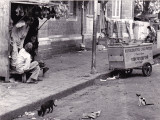 1980/02/20 India, Madras
