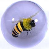 Honey Bee Size: 1.40 Price: SOLD