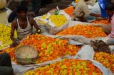 Malik ghat flower market.Kulkata