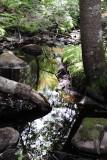 Parc Mauricie NP 2012