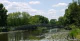 Lily pad bridge