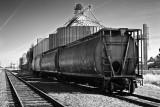 Grain Silos with Train Cars