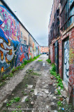 Colorful Back Alley