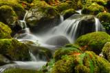 lower vallace falls, washington