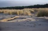 Lilaste beach