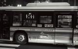 201102-11-IIIb-400TX-800ISO-50ELMAR-135HEKTOR-01 copy.jpg