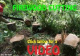 FIREWOOD CUTTING VIDEO
