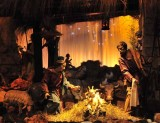 The Nativity Inside St. Peter's