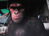 Planet of the Apes - In Flight Delight
