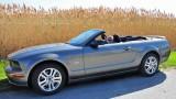 Mustang Gramma