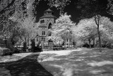 Brown U Area, RI - Infrared Perspective
