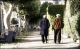 a walk_1030002w.jpg
