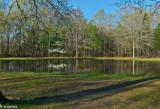 Springtime, Bloody Pond