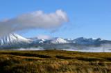 Morning Mist, Ruapehu and the Desert Road