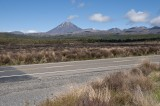 Mt Ngauruahoe in Summer Colours