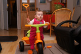 Cycling at the age of 6 months...