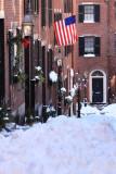 Acorn Street (Vertical II)