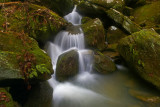 Creek cascade below  Anglin Falls
