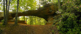 Princess Arch, Red River Gorge, Kentucky