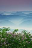 Virginia ridges.....