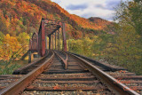 RAILROAD TRESTLE-5092-.jpg