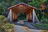 PRIVATE COVERED BRIDGE IN VIRGINIA_5431.jpg