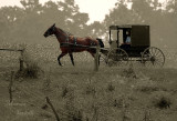 AMISH / MENNONITE AND THEIR LIFESTYLE