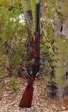 Beretta Renegade .357 Magnum