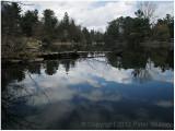 Pine Lake.