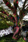 The Painted Tree