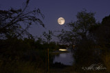 Full Moon on Aug 13, 2011