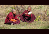 820_MS_2394 young monks eating_Gangtey copy-s-.jpg