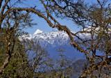 820_YH_Himalaya Mt. Jumolhari 7300 mts b_MG_3246-s-.jpg