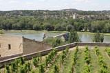 IMG_3510.jpg Avignon