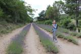 IMG_3729.jpg Abbaye de Senanque