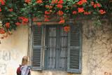 IMG_4208.jpg Avignon