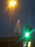 2008-01-02 Last Christmas tree