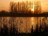 2008-01-12 January sunset