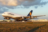 2011 - Lufthansa A380-841 D-AIMC Peking rotating on takeoff at Miami International Airport aviation airline stock photo