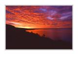 Pelican Pointe Sunrise