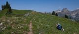 Photographing Flowers, Maple Pass Loop Trail <br> (MaplePass_081112-175-1.jpg)